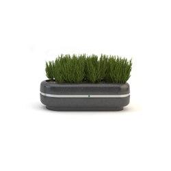 Cristina Beta Planter | Planters | Bellitalia
