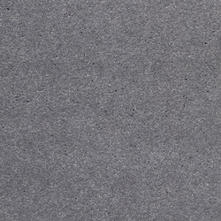 concrete skin | FE ferro chrome | Concrete panels | Rieder