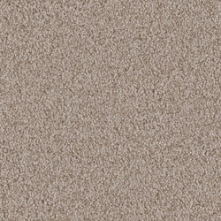 Amiru 8h03 | Wall-to-wall carpets | Vorwerk