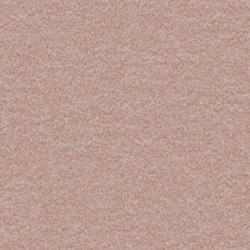 Nutria Comfort 1l52 | Carpet rolls / Wall-to-wall carpets | Vorwerk