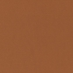 Pina D | 15492 | Curtain fabrics | Dörflinger & Nickow