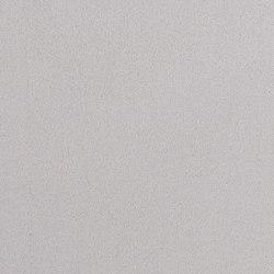 Pina D | 15507 | Curtain fabrics | Dörflinger & Nickow