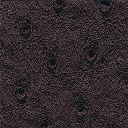 Ben | 16602 | Upholstery fabrics | Dörflinger & Nickow