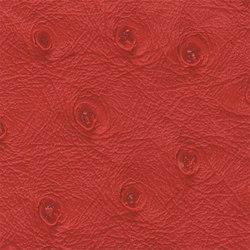 Ben | 16606 | Upholstery fabrics | Dörflinger & Nickow