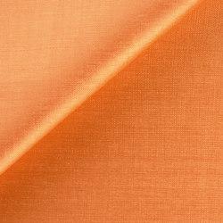 Bruno Triplet B068-55 | Curtain fabrics | SAHCO