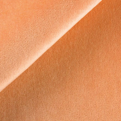 B108 600199-0025 | Upholstery fabrics | SAHCO
