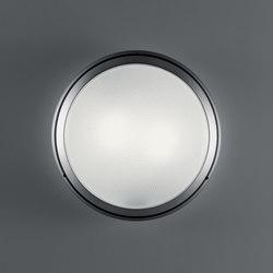 Pantarei 390 vetro grigio silver | Lampade outdoor parete | Artemide Architectural