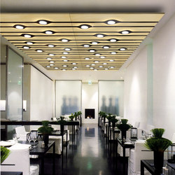 Inlay Plot Panel | Illuminated ceiling systems | Yellow Goat Design