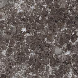 Marmoker 180 grigio billiemi | Tiles | Casalgrande Padana