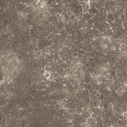 Marmoker grigio billiemi | Ceramic tiles | Casalgrande Padana