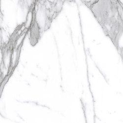 Marmoker statuario venato | Tiles | Casalgrande Padana