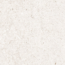 Marmoker 180 veselye | Außenfliesen | Casalgrande Padana