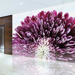 ViviSpectra Zoom Glass | Vidrios decorativos | Forms+Surfaces®