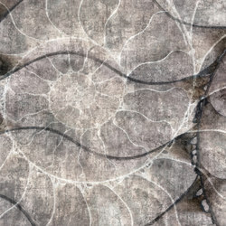 Fossil Nautilus | Wall coverings | GLAMORA
