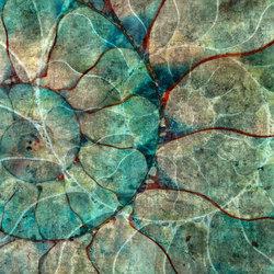 Nautilus | A medida | GLAMORA