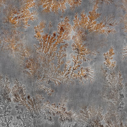Fossil Octocorallia | Wall coverings | GLAMORA