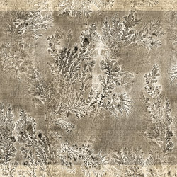 Fossil Octocorallia | Bespoke wall coverings | GLAMORA