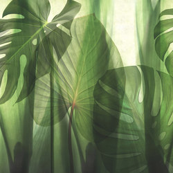 Paysage Equatorial Jungle | Bespoke wall coverings | GLAMORA