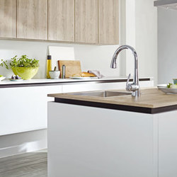 Ladylux3 Café | Kitchen taps | Grohe USA