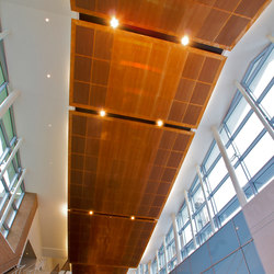 Custom Ceiling in Classic Metal Collection Copper with Clouds Grain, Perforated | Metal sheets / panels | Moz Designs