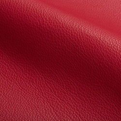 Cervo | Natural leather | Spinneybeck