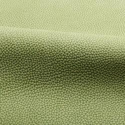 Umbria | Natural leather | Spinneybeck