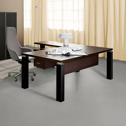 Tao Executive | Individual desks | Sinetica Industries