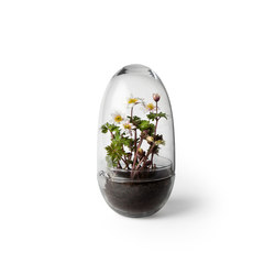 Grow greenhouse large | Contenore / Vasi per piante | Design House Stockholm