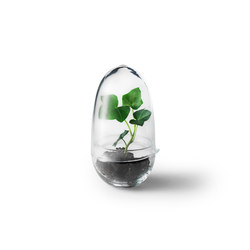 Grow greenhouse | small | Contenore / Vasi per piante | Design House Stockholm
