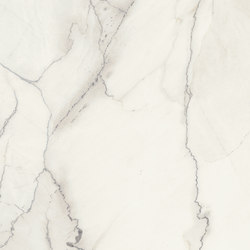 Marmi Maxfine Statuario Light | Slabs | FMG