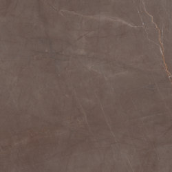 Marmi Maxfine Gaudi Stone | Slabs | FMG