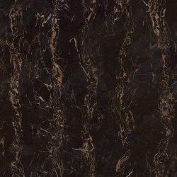 MAXFINE Marmi Portoro | Baldosas de cerámica | FMG