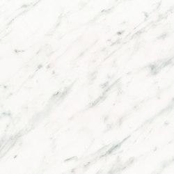 Marble | Stone Tiles Carrara grau | Láminas de plástico | Hornschuch