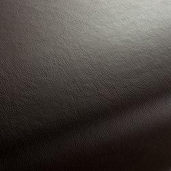 Secc 2320 | Cuero | Carpet Concept