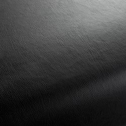 Secc 2494 | Leather | Carpet Concept