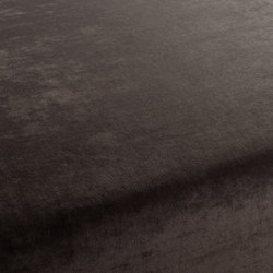 Spaa 021 | Tejidos | Carpet Concept