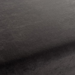 Spaa 022 | Tejidos | Carpet Concept