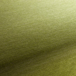 Luxx 036 | Tejidos | Carpet Concept