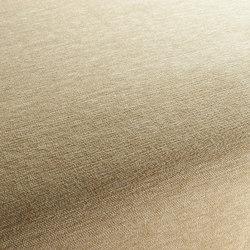 Luxx 075 | Tejidos | Carpet Concept