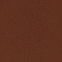skai Evida chestnut | Faux leather | Hornschuch