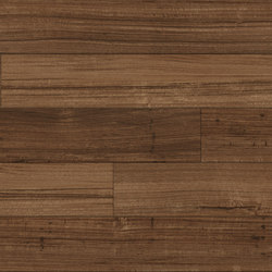 Spotted Gum - Cognac | Synthetic panels | Aspecta