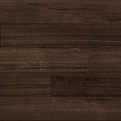 Spotted Gum - Espresso | Synthetic panels | Aspecta