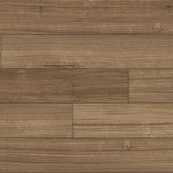 Spotted Gum - Sahara | Synthetic panels | Aspecta