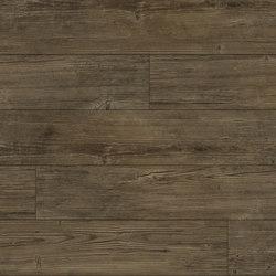 Summer Pine - Ash | Plastic flooring | Aspecta