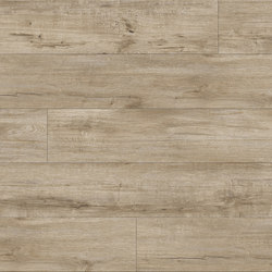 Brindle Oak - Sand Drift | Plastic flooring | Aspecta