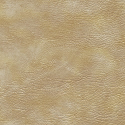 skai Sarano sand | Faux leather | Hornschuch