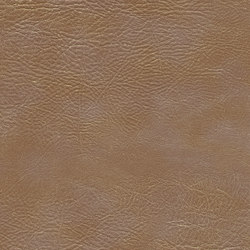 skai Sarano camel | Faux leather | Hornschuch