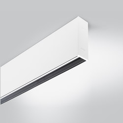 Rigo 30 | ceiling gc | General lighting | Arcluce