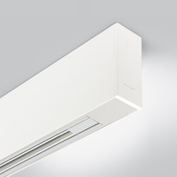 Rigo 50 | ceiling electrified | General lighting | Arcluce
