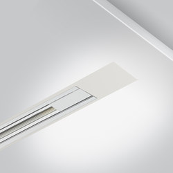 Rigo 50 | trim electrified | Recessed ceiling lights | Arcluce